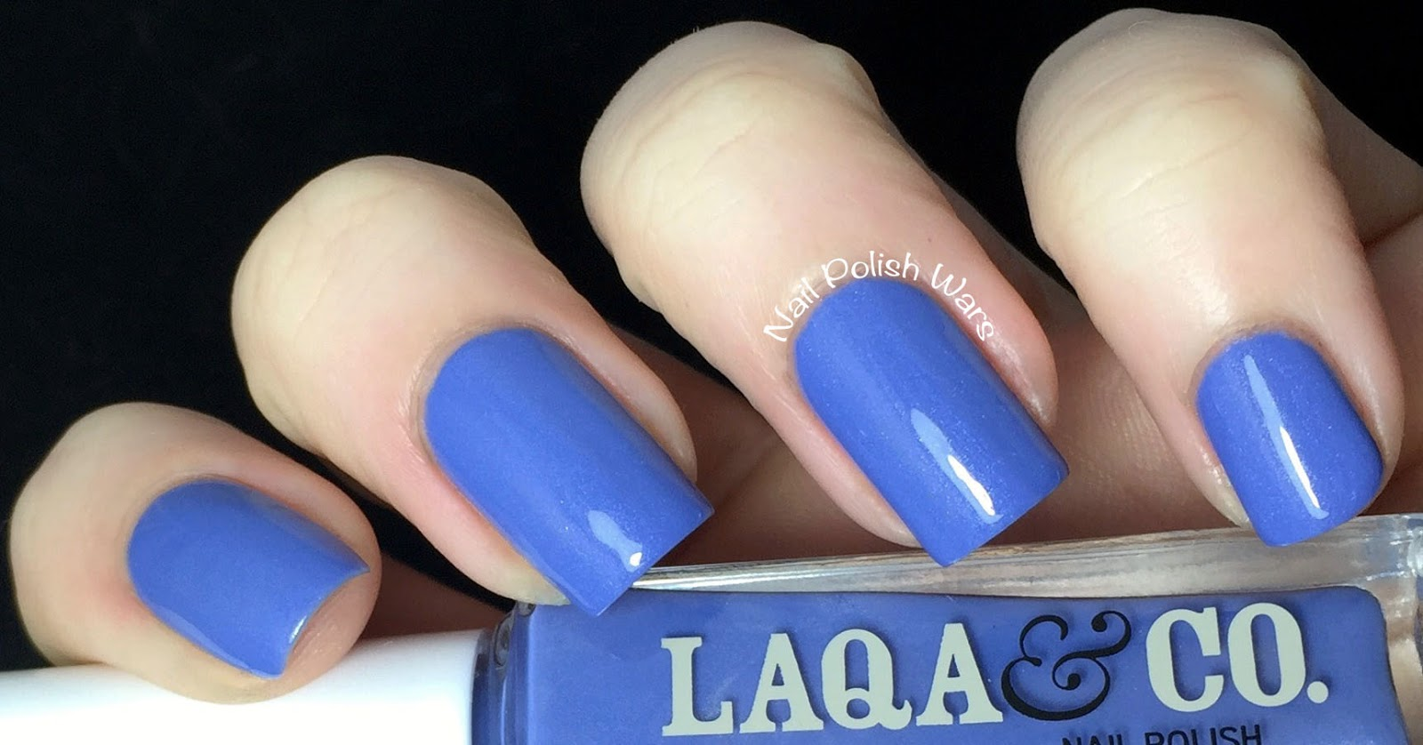 LAQA & Co.