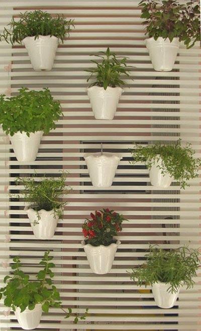 mini jardim de temperos : mini jardim de temperos:estrado facilita o pendurar dos vasos, e é muito prático
