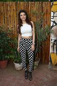Hindi Actress Sherlyn Chopra photos-thumbnail-5