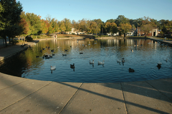 11. Fountain City Duck Pond.