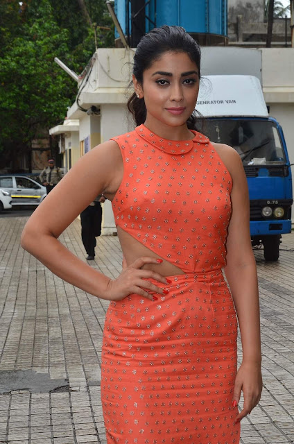 Shriya Saran during the media interaction of film Drishyam in Mumbai