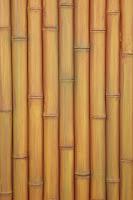 Bamboo Panels3