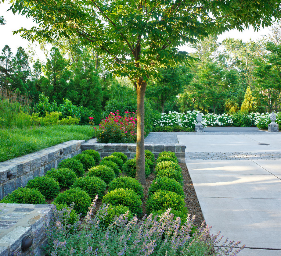http://www.houzz.com/photos/1325547/North-Arlington-Residence-traditional-landscape-dc-metro