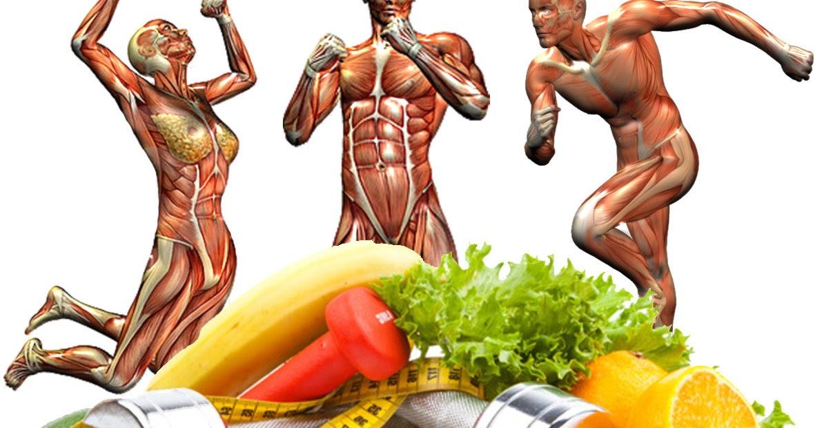 Estética y Nutrición Garofalo.: Alimentación del Deportista
