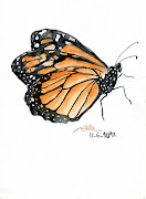 Mariposa a acuarela. Mariposa a acuarela. Publicado por Natalia en miércoles .