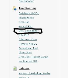 DNS Zone Editor Idhostinger
