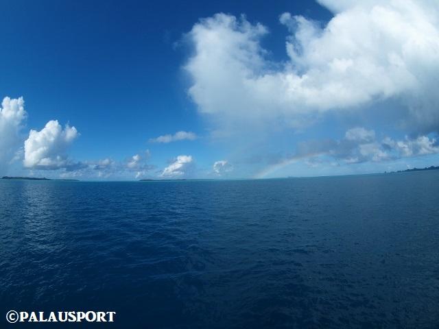 パラオ 体験ダイビング 海 虹