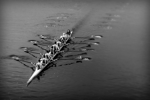 Rowing black and white