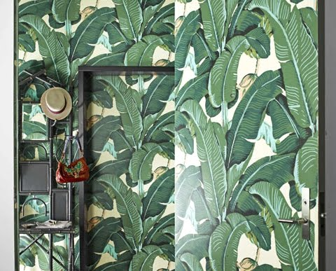 tropical leaf wallpaper