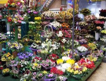 روسي يقتحم متجر زهور بالسلاح ليسرق وروداً لحبيبته  - flowers shop