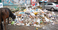 Waste, Road, kasaragod, Kerala, KSRTC, Chicken, Bus Stand, Court, M.G. Road