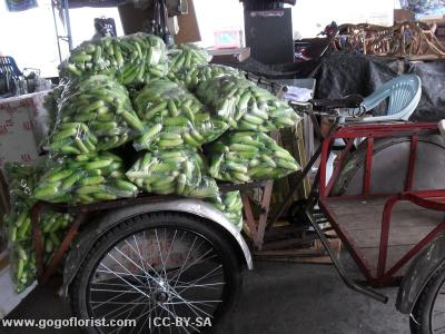 Cucumbers on a rickshaw in Bangkok
