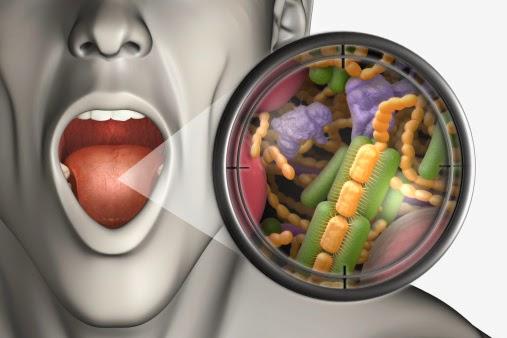 Bakteri Anaerobik Penyebab Bau Mulut