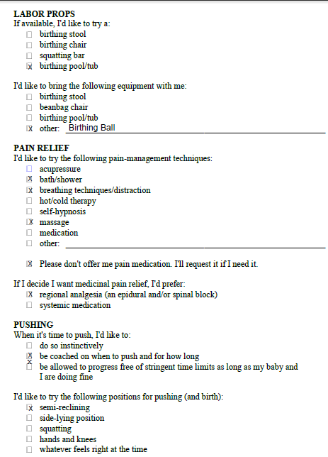 Printables Birth Plan Worksheet ryding through it birth plan if something comes up and i can not go by my will freak out did know how to start but found a really helpful worksheet