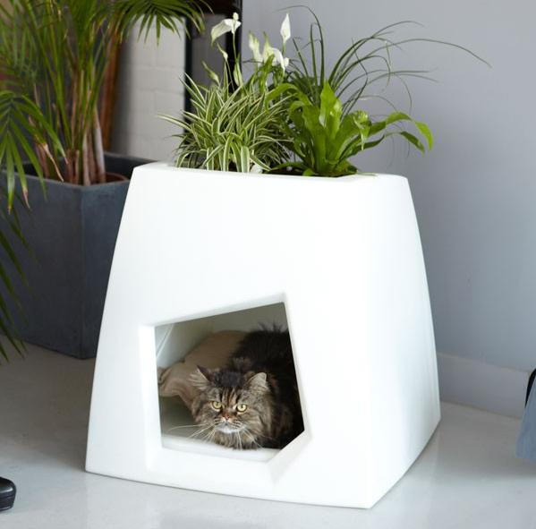 Cat Kennels For Sale Saint John