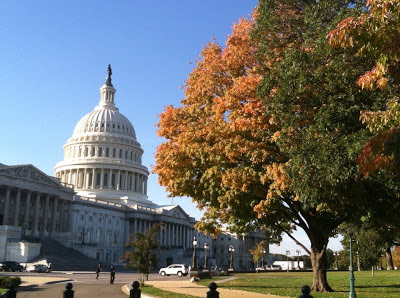 Fall at the Capitol