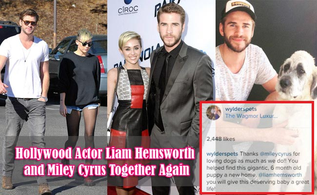 Hollywood Actor Liam Hemsworth and Miley Cyrus Together Again