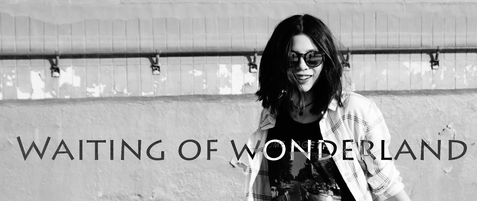 waiting of Wonderland△