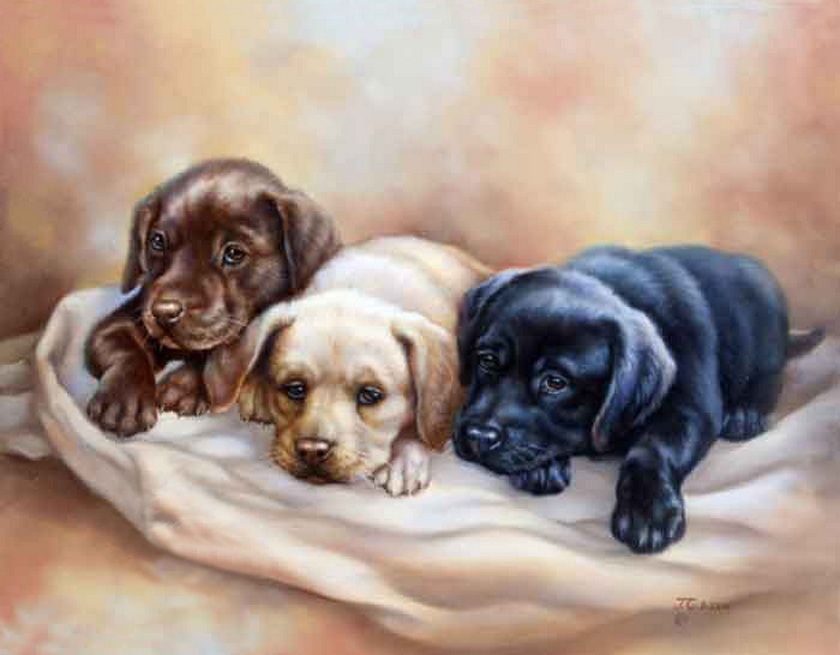 Картинки для декупажа с собачками