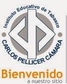 I.E.T. CARLOS PELLICER CÁMARA