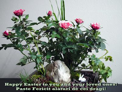 Happy Easter! Paste Fericit!
