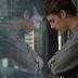 Confira o trailer de 'Entre Abelhas', com Fábio Porchat