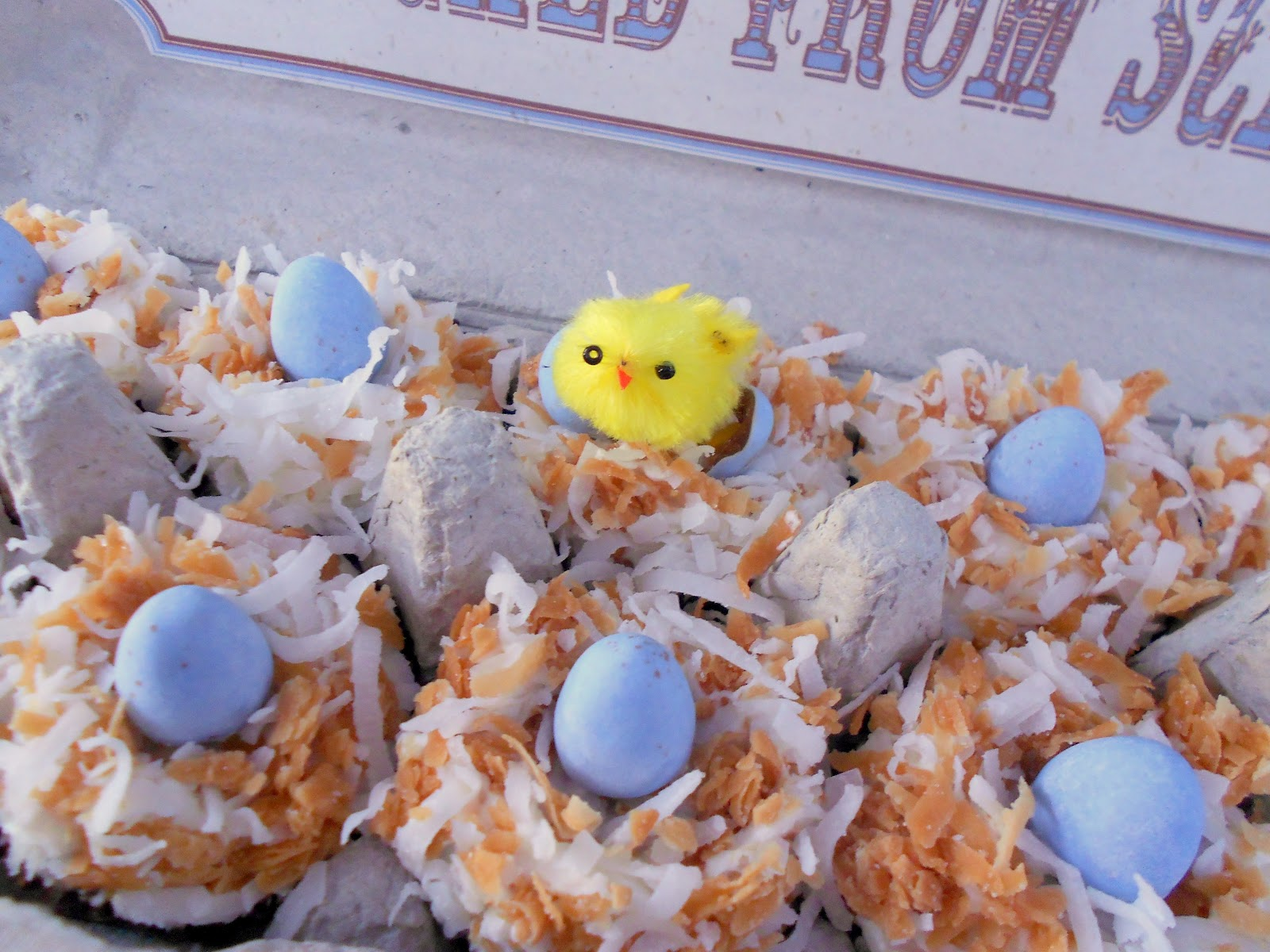 Hatched from Scratch: Mini Coconut Nest Cupcakes ~ Healthy Recipe ...