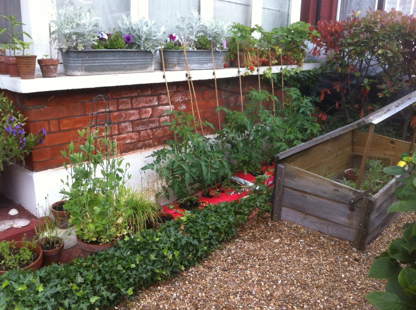 window box garden melissa harrison