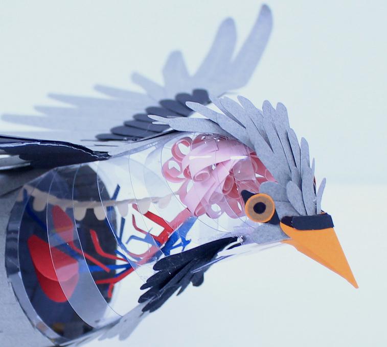 Diana Beltran HerreraPaper Bird Anatomy Junkculture