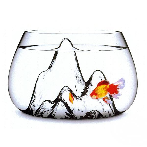 The Fishscape Fish Bowl: