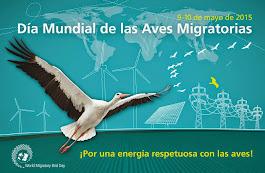 9 -10 de mayo - Día Mundial de las Aves Migratorias