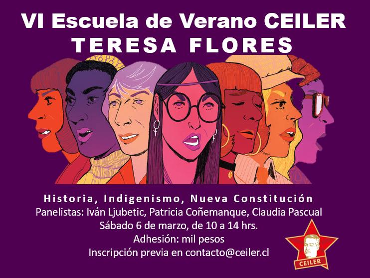 VI ESCUELA DE VERANO CEILER. TERESA FLORES