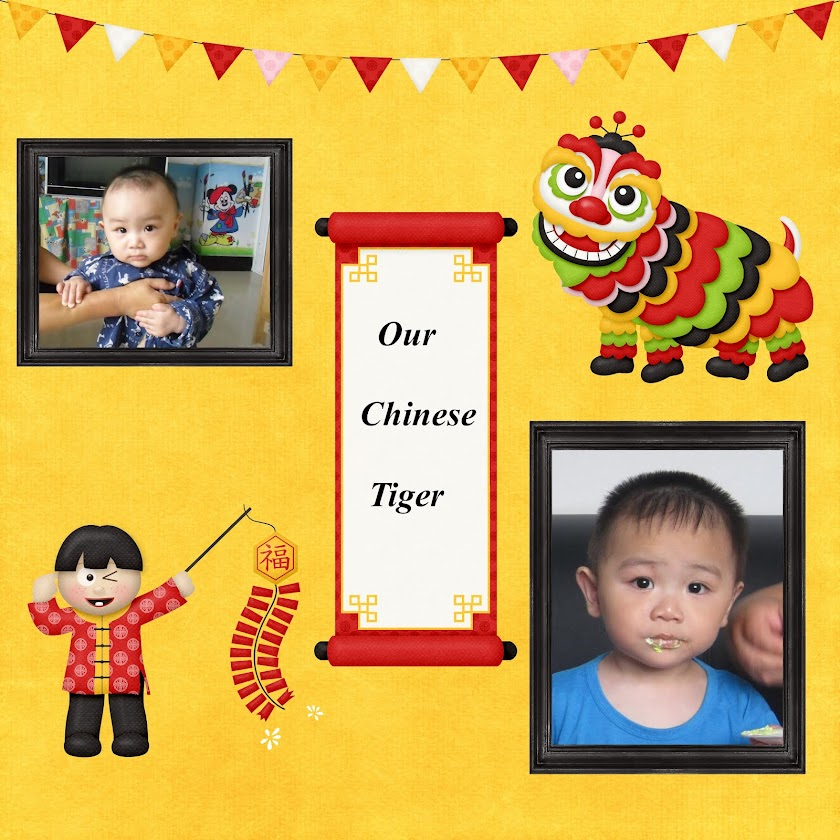 Our Chinese Tiger