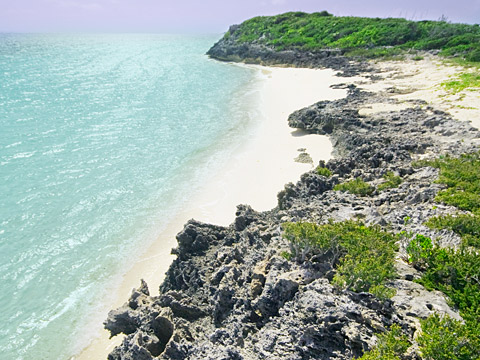 pumpkin-bluff-beach-north-caicos