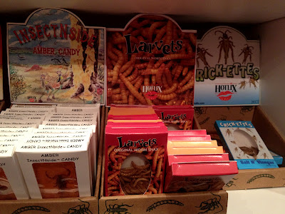 bug candy, sassafras, store, winter park