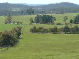 Braidwood NSW and the clarke brothers