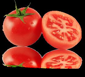 tomat, khasiat dan manfaat tomat