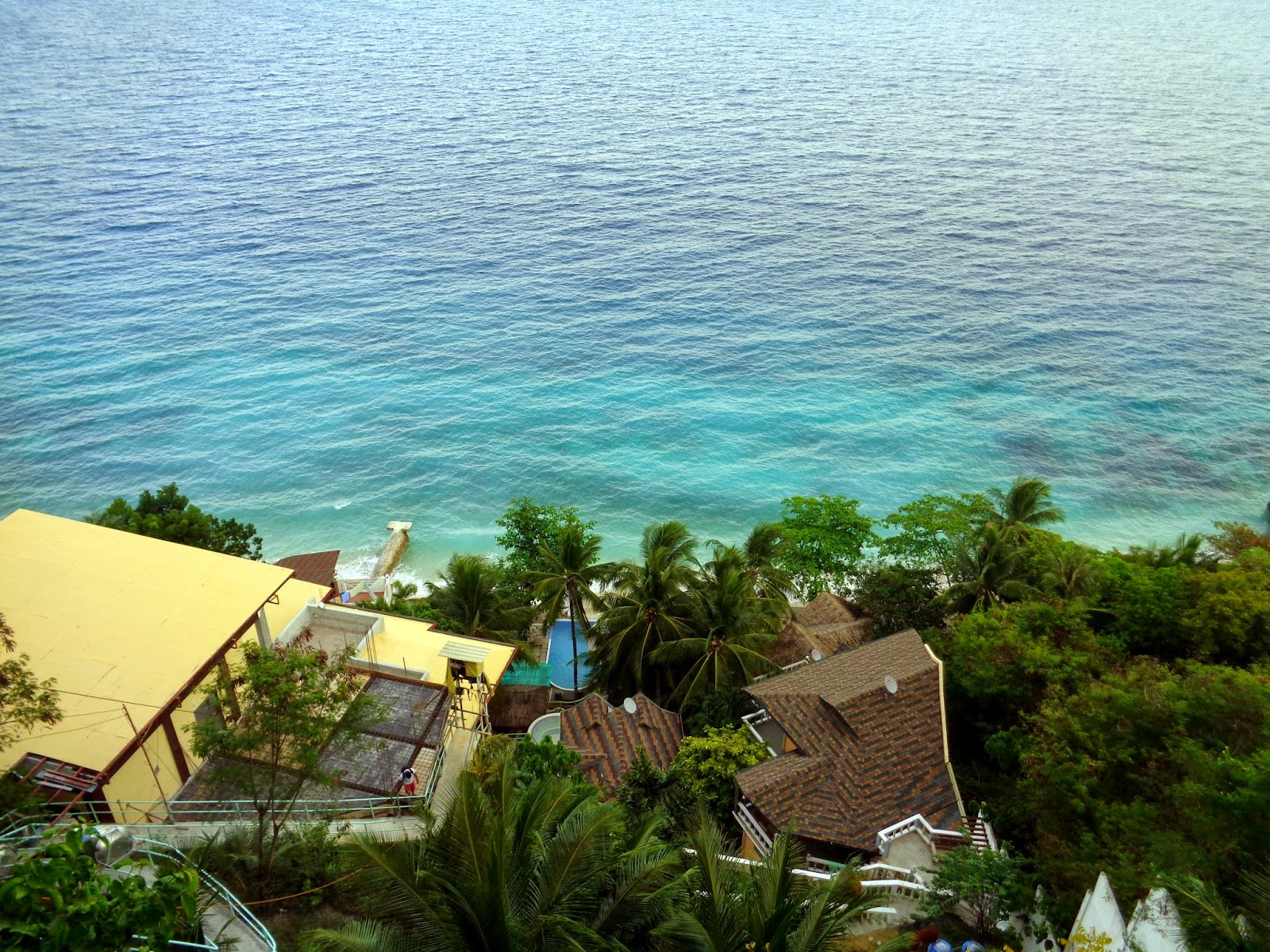 oslob resorts, seafari