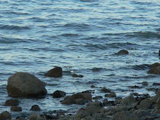 irish sea copyright kerry dexter