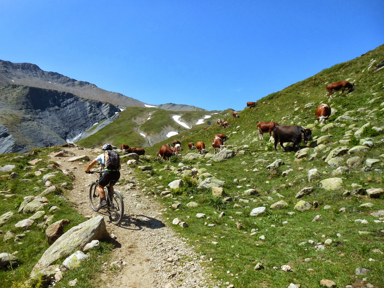 Alpi runner72 tour dei rifugi del monte bianco la for Tour de chavannes