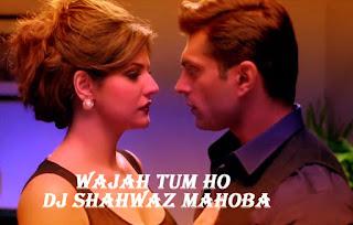 Wajah-Tum-Ho-Zeeshan-Hate-Story-3-Dj-Shahwaz-Mahoba