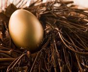 Nest Egg Goal
