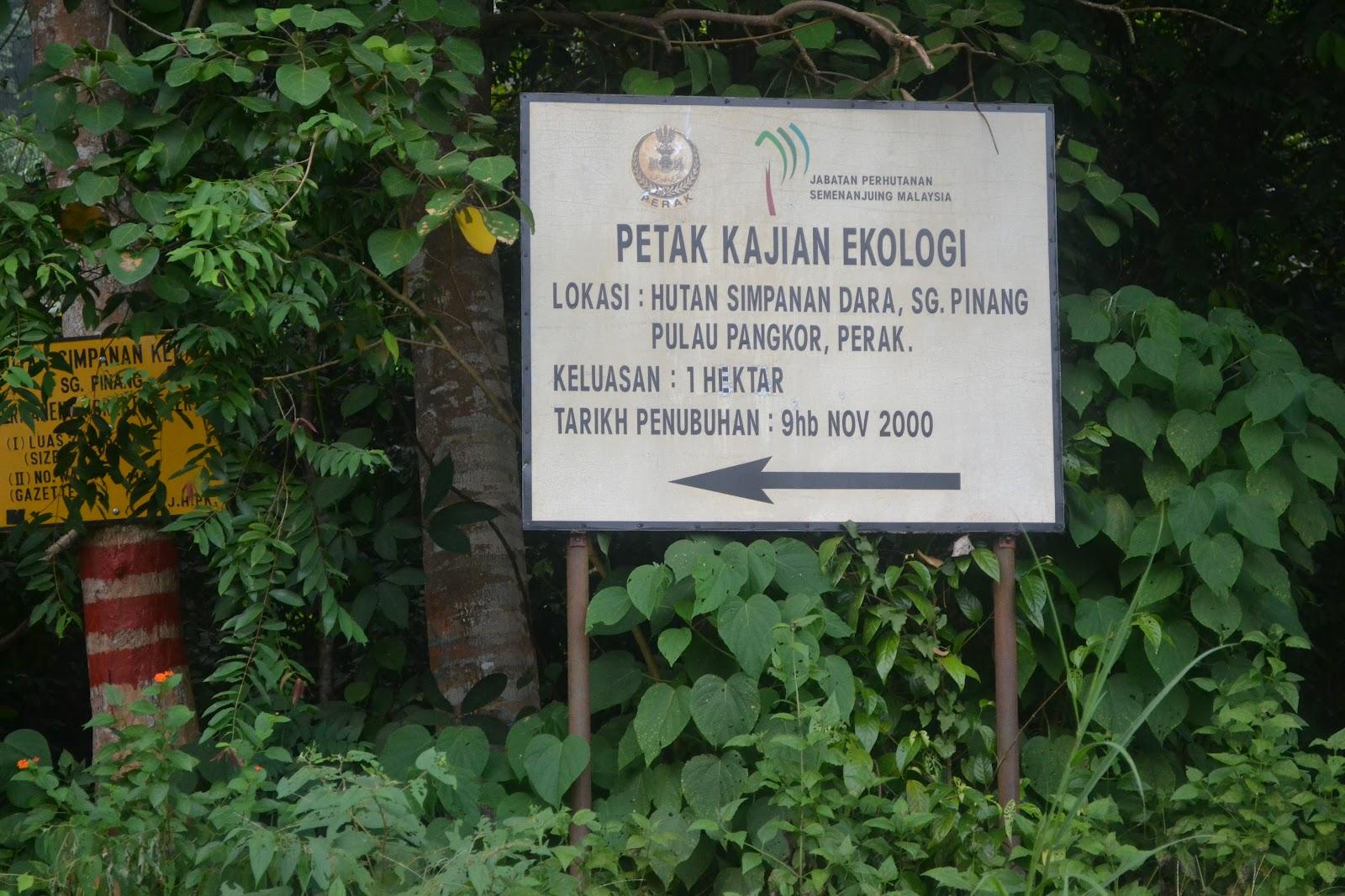 how to go pulau pangkor