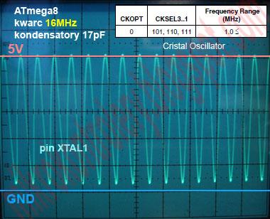 ATmega8 kwarc 16MHz, CKOPT=0 CKSEL3..1=111 - Obraz sygnału oscylatora na pinie XTAL1 w czasie pracy rail-to-rail