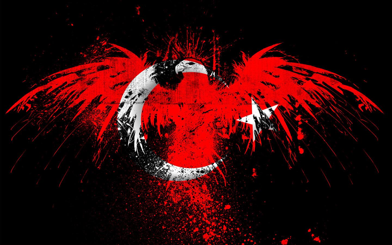 http://2.bp.blogspot.com/-doKO0Bs76ak/UFN6dSpvaOI/AAAAAAAAADA/EMPagQQYPZM/s1600/kartal_motifli_turk_bayragi_487823.jpg