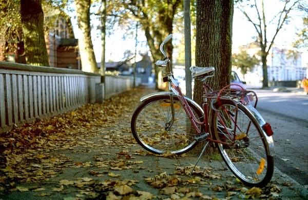 Las bicicletas tambi n son para el oto o guia de jardin - Fotos bonitas de otono ...