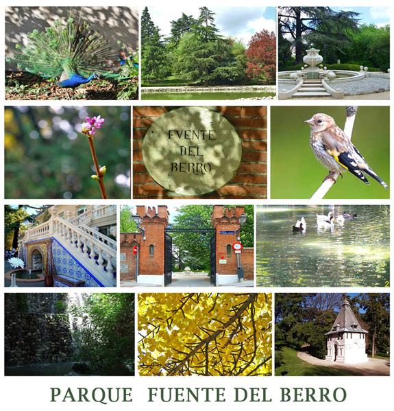 Monograficos acuarela parque fuente del berro for Piscina fuente del berro