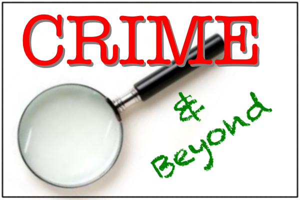 Mystery Playground Crime Beyond Book Club Reviews Suspect By
