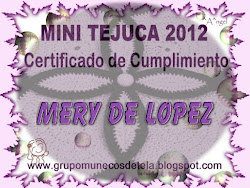 Certificado Mini Tejuca
