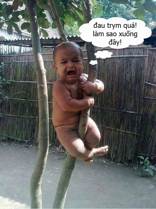 Bộ sưu tập những hình ảnh hài hước nhất chỉ có ở Việt Nam. Tổng hợp những hình chế hài hước nhất, hình chế hài hước bá đạo